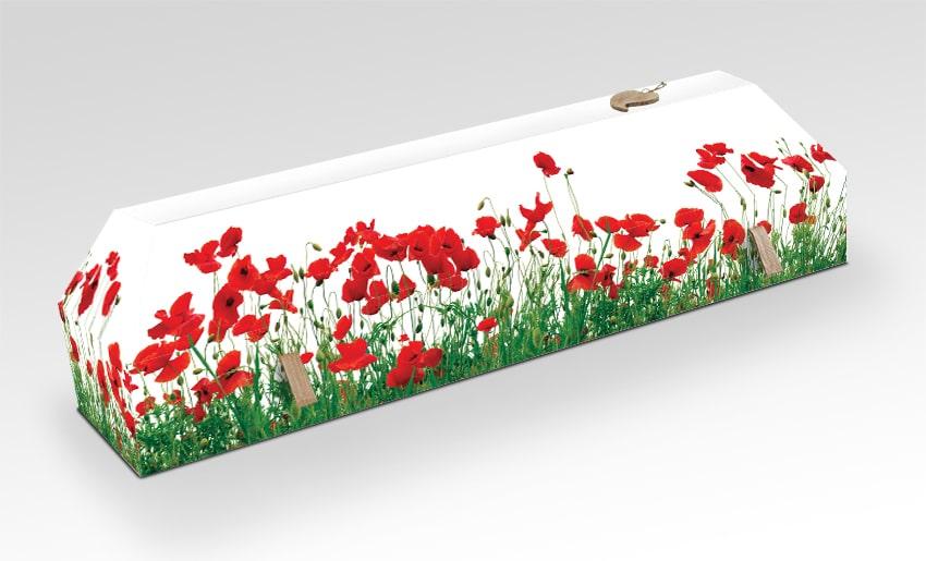 cercueil en carton personnalisé