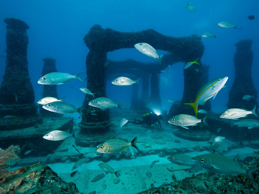 Cimetière sous-marin
