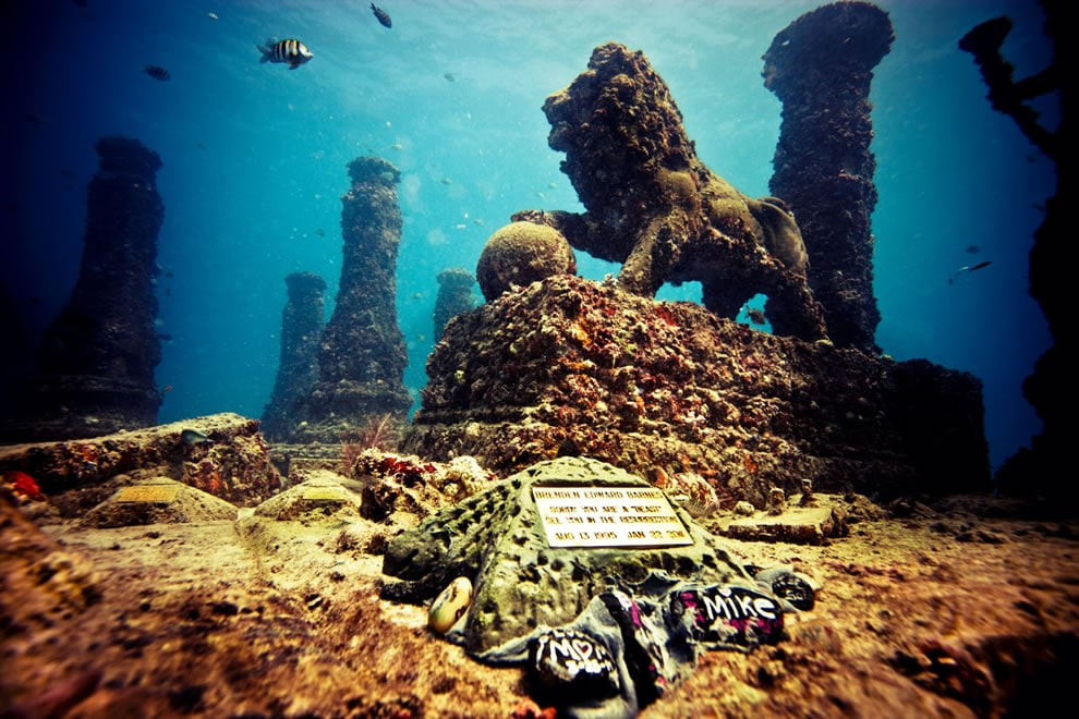 Illustration •Le Neptune Memorial Reef, un cimetière sous-marin au large de la Floride