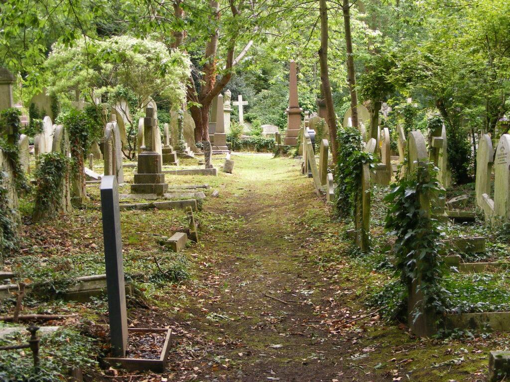 Illustration •Le cimetière de Highgate à Londres, entre recueillement et féérie