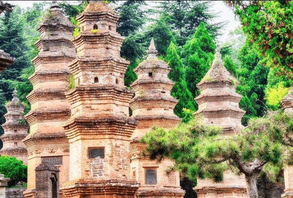 La forêt de Pagodes du Temple Shaolin