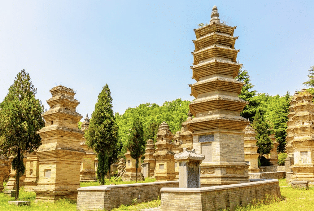 Le cimetière forêt de Pagodes en Chine