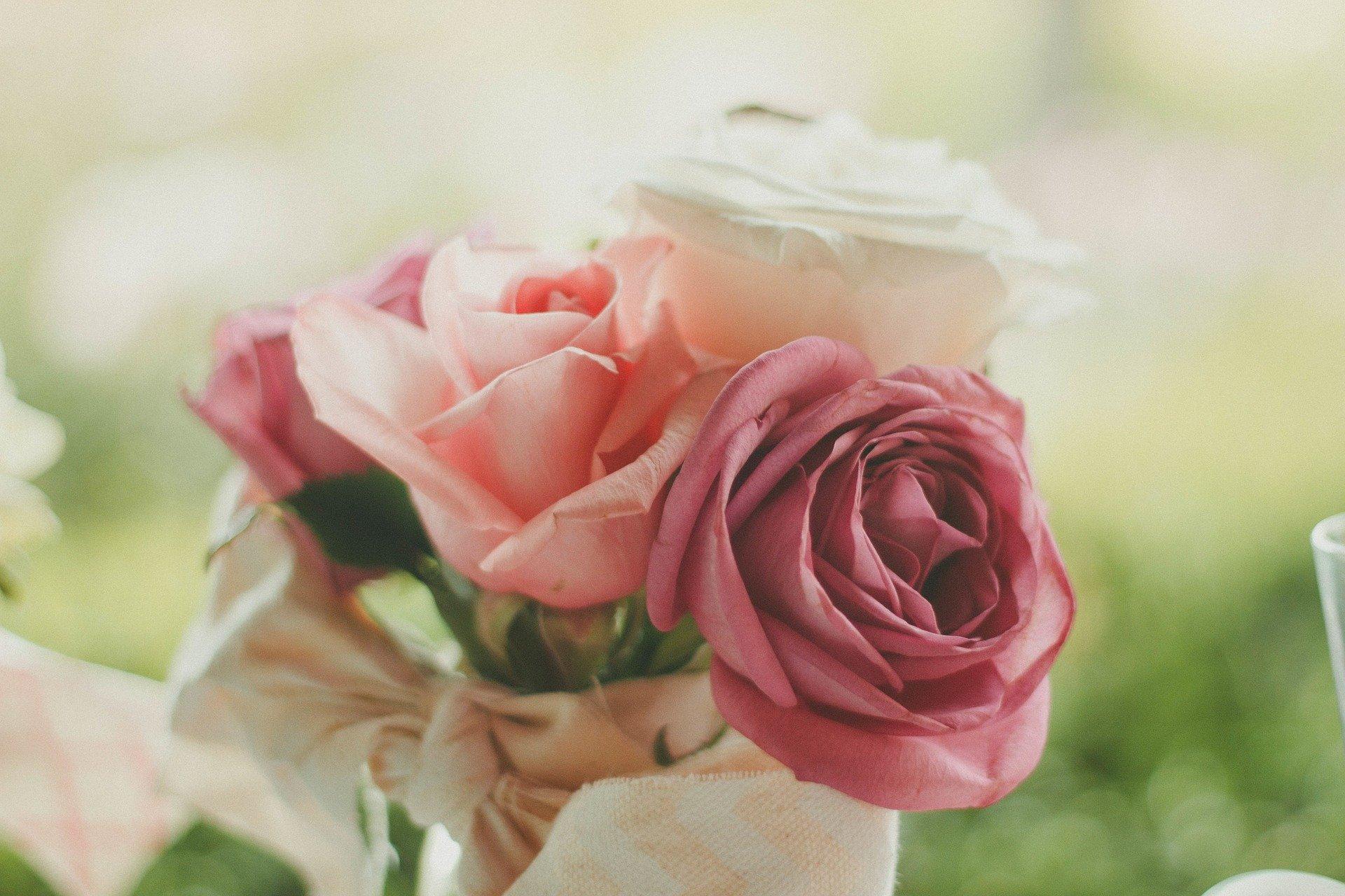 Les roses, un classique des cadeaux de Saint-Valentin